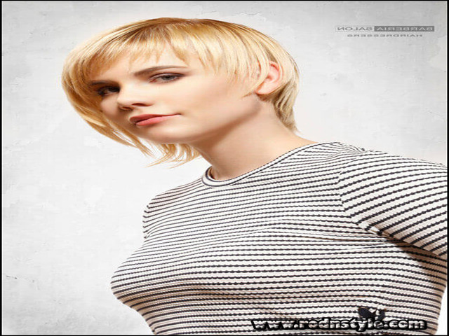 Pictures Of Haircuts For Fine Hair 11