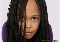 Braiding Hairstyles For Teenagers 4
