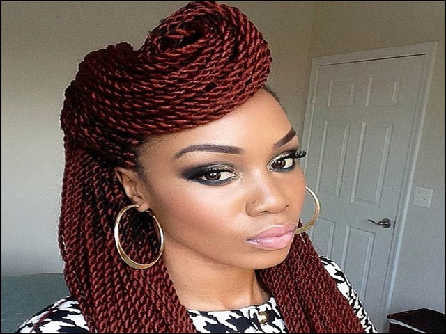 black-hairstyles-braids-and-twists-1 10 Pictures Of Black Hairstyles Braids And Twists