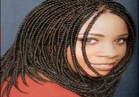 Black Braids Hairstyles 2015 6