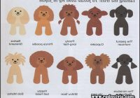 Types Of Dog Haircuts 6